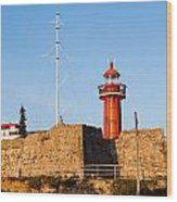 Farol Do Forte Sta. Catarina Wood Print