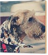 Airedale On The Fashion Runway Wood Print
