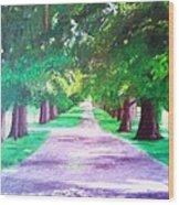 Fdr's Driveway Wood Print