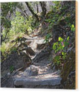 Feather Falls Stairway Wood Print