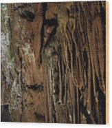 Featured Grotte De Magdaleine In South France Region Ardeche Wood Print