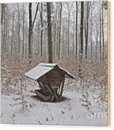 Feed Box In Winterly Forest Wood Print