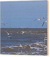 Feed Us - Ferry To Galveston Tx Wood Print