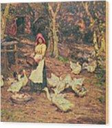 Feeding The Ducks Wood Print