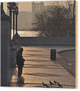 Feeding The Pigeons At Dawn Wood Print