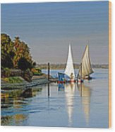 Feluccas On The Nile Wood Print