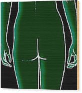 Female, Full Posterior View Wood Print
