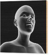 Female Head And Shoulders, Artwork Wood Print