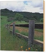 Fence And Poppies Wood Print