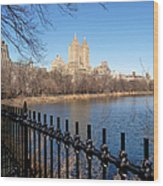 Fence With Twin Towers, San Remo Wood Print