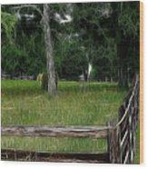 Fenced In Field Wood Print