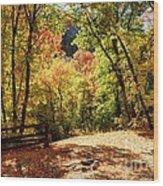 Fenced Path Through Autumn Forest - Blacksmith Fork Canyon - Utah Wood Print