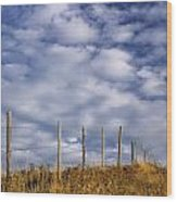 Fenceline In Pasture With Cumulus Wood Print by Darwin Wiggett