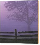 Fenceline Silhouette With Tree Wood Print