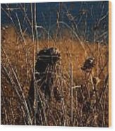 Fencepost And Thistles Wood Print