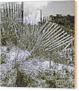 Fences In Duotone Wood Print
