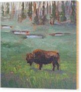 Ferdinand Yellowstone Np Wood Print by Karin  Leonard