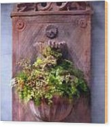 Fern In Antique Wall Planter Wood Print