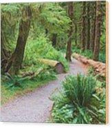 Ferns And Mosses Wood Print