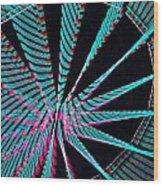 Ferris Tracings 560 Wood Print