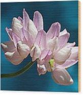 Fetch Flower Wood Print