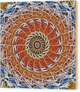 Fiber Eye Wood Print