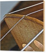 Fiddle Strings Wood Print