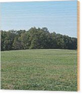 Field At Mount Vernon Wood Print