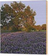 Field Of Blue Wood Print