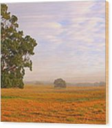 Field Of Gold Wood Print by Paul Riemer