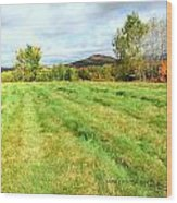 Field Of Green Wood Print