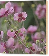 Field Of Japanese Anemones Wood Print