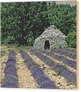Field Of Lavender. Sault Wood Print by Bernard Jaubert