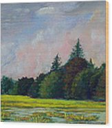 Fields Mid-storm Wood Print by Peter Jackson