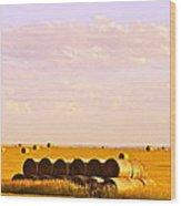 Fields Of Plenty Wood Print by Kate Purdy