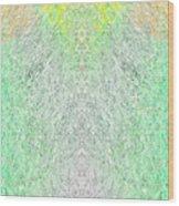 Fierfly Macro1 Wood Print