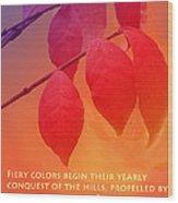 Fiery Colors Wood Print
