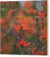 Fiery Spring Wood Print