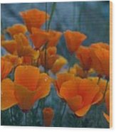Fill The Frame With Poppies Wood Print