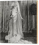 Film: Fair Lady, 1922 Wood Print