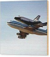 Final Flight Wood Print