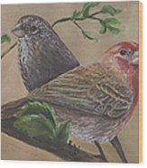 Finch Delights Wood Print