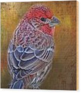 Finch With Gold Texture Wood Print