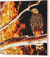 Fire Hawk 0112 Wood Print