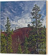 Fire Lookout II Wood Print