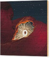 Firearch Wood Print