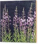 Fireweed Flowers Wood Print
