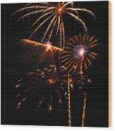 Fireworks 1580 Wood Print by Michael Peychich