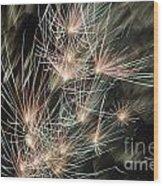 Fireworks On Bastille Day Wood Print by Sami Sarkis
