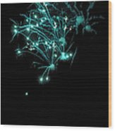 Fireworks Oooh 1 Wood Print